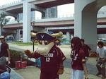 神戸震災復興記念公園植え付け090620_05.jpg