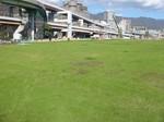 S2神戸震災復興記念公園状況視察091202 002.jpg