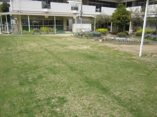 s3港島幼稚園160329目砂作業 (3).jpg