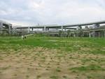 s4神戸震災復興記念公園養生経過090728 004.jpg