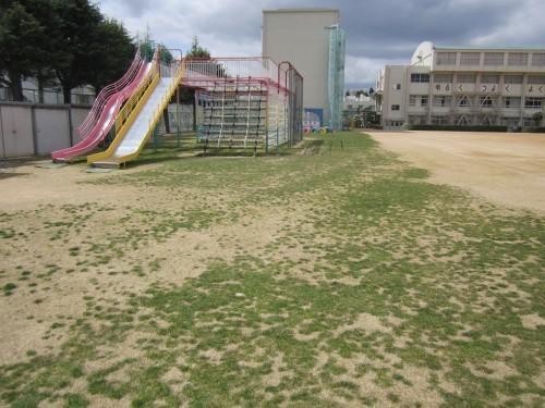s4桜の宮160325薬剤散布作業 (4).jpg