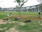 s8神戸震災復興記念公園状況視察090918 008.jpg
