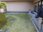神戸さつき園111117 (3).JPG
