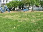 S3桜の宮小学校状況視察080516 003.jpg
