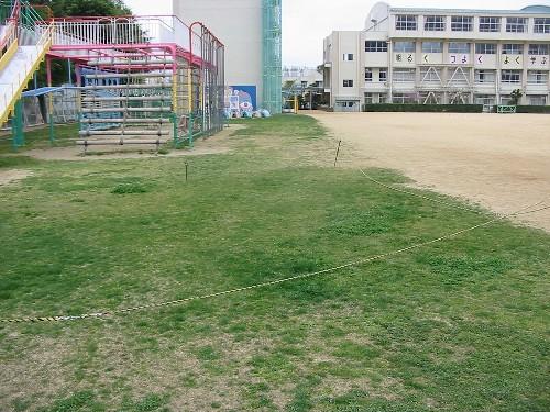 S6桜の宮状況視察110422 006.jpg