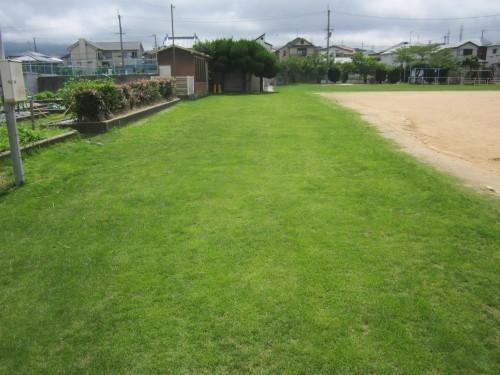 s1桜の宮160702芝生クラブ (1).jpg