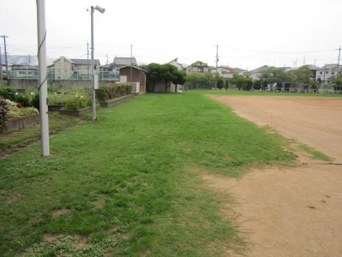 s1桜の宮芝生クラブ130907 (1).jpg
