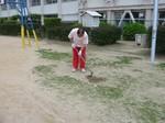 s29桜の宮ポット苗作り080522 029.jpg