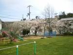s2桜の宮100410-0002.jpg