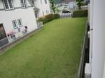 s3姫路聖ミカエル幼稚園120628 (3).jpg
