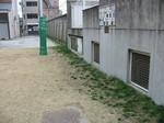 s4今宮芝生診断(今宮小)071225 004.jpg