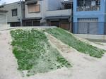 s5千本大阪市調査報告(千本小)080326 005.jpg