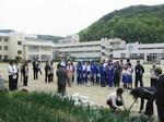 s6淡路聴覚特別支援学校ポット苗つくり090420 006.jpg