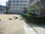 s8桜ノ宮小学校060304 008.jpg